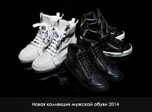 Мужские обувь 2014